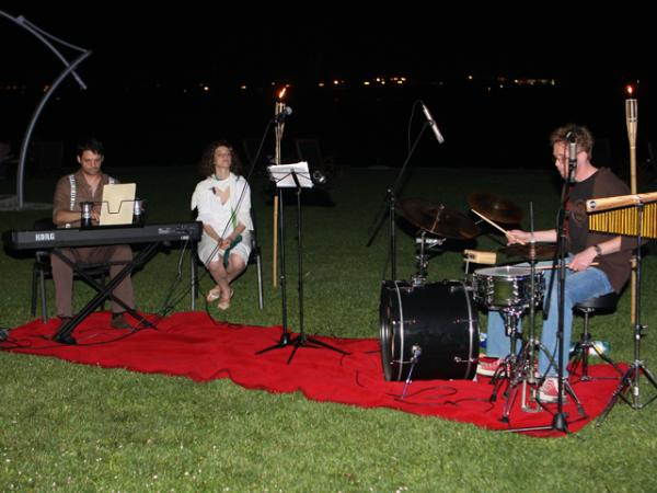 O seară de muzică la Gociman